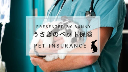 うさぎのペット保険