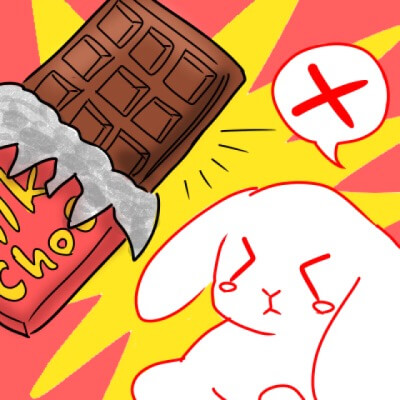 うさぎ_チョコレート