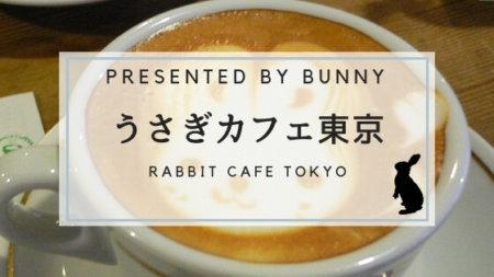 うさぎカフェ東京