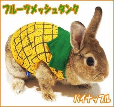 レインボー うさちゃんの服 ラビットミニフルーツメッシュタンク(パイナップル)
